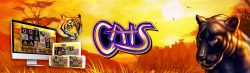 Cats Slot Review (2021)